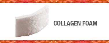 Collagen Foam (Cote)