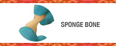 Sponge Bone