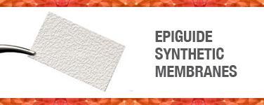 Epiguide Synthetic Membrane