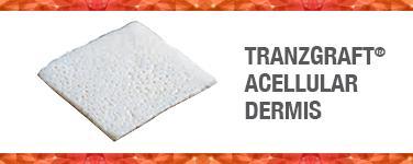 Transgraft Accellular Dermis